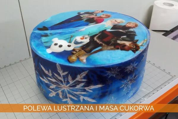 Tort kraina lodu